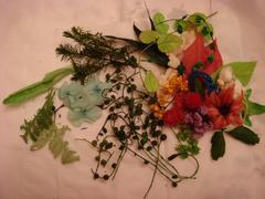 群馬県のEMIKO様-庭の花や葉をプリザーブドフラワーに♪